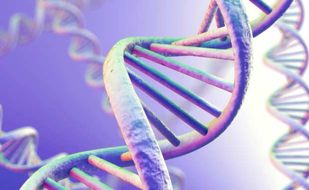 DNK geni
