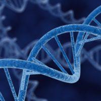 geni gospodari organizma