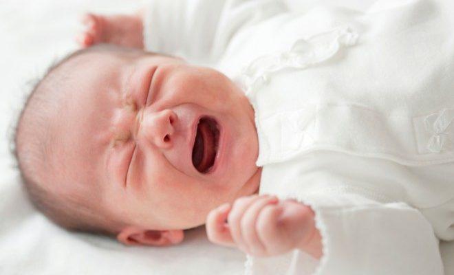 grcevi kod bebe