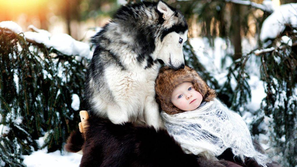 beba i zima