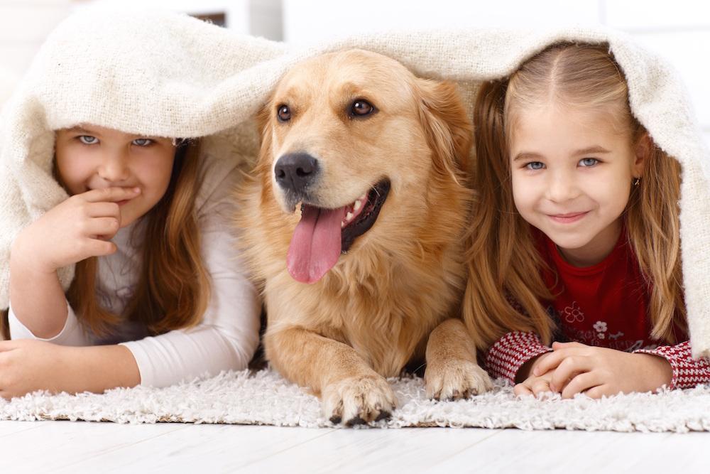 Pas je covjekov najbolji prijatelj