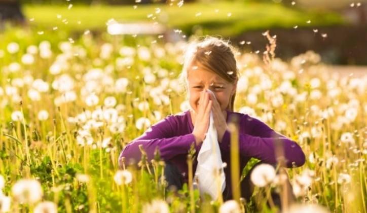 alergijski kašalj kod djece